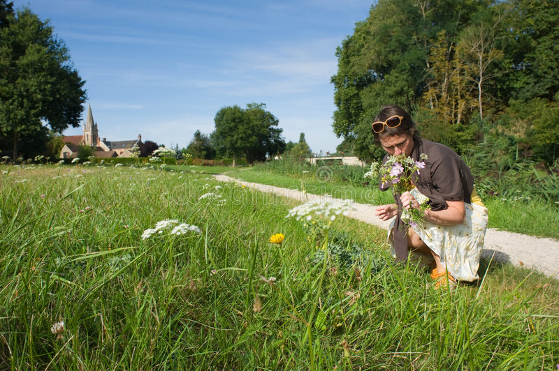 Download Woman Picking Wild Flowers Stock Images - Image: 7203864