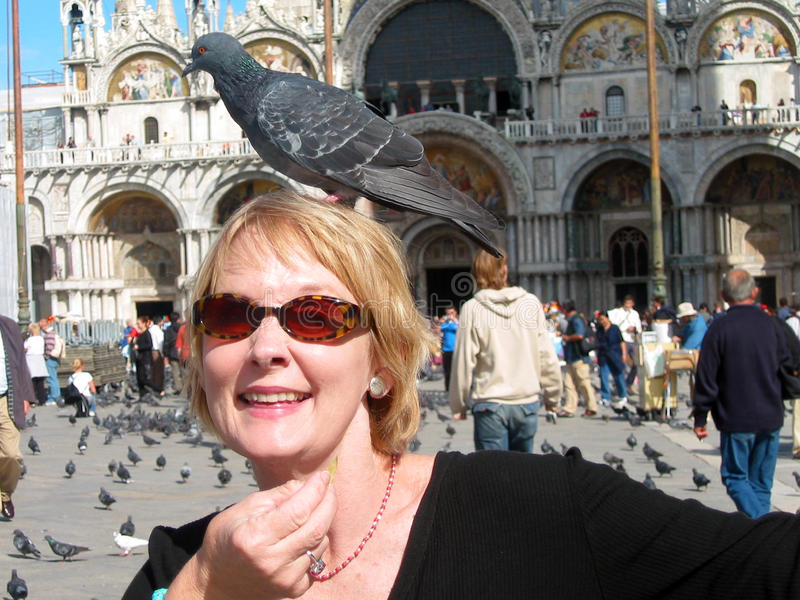 Woman with Pigeon on Head. Woman in St. Mark's Square, Venice, Italy, feeding pigeons, with one pigeon landing on her head