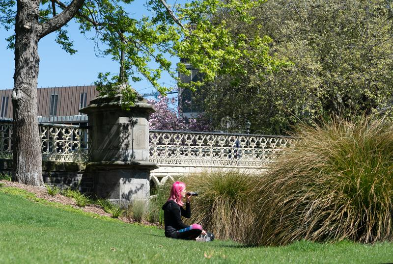 Woman with pink hair sitting in Victoria Square Christchurch royalty free stock image