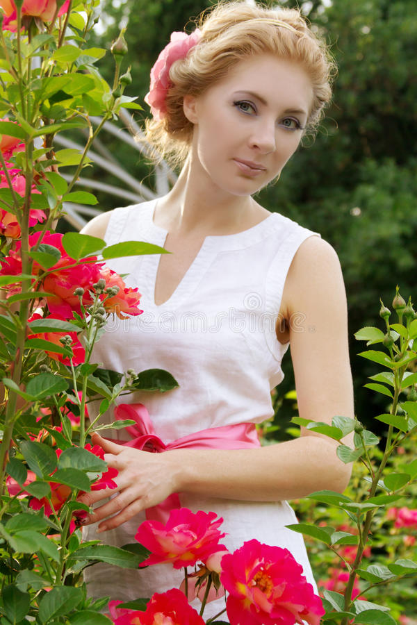 Woman among pink rose garden royalty free stock photography