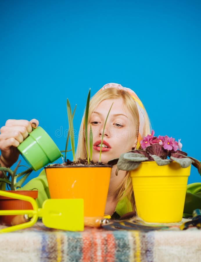 Woman planting flowers in pot. Beautiful young woman gardening. Watering flowers. Gardener woman planting flowers. Cute stock images