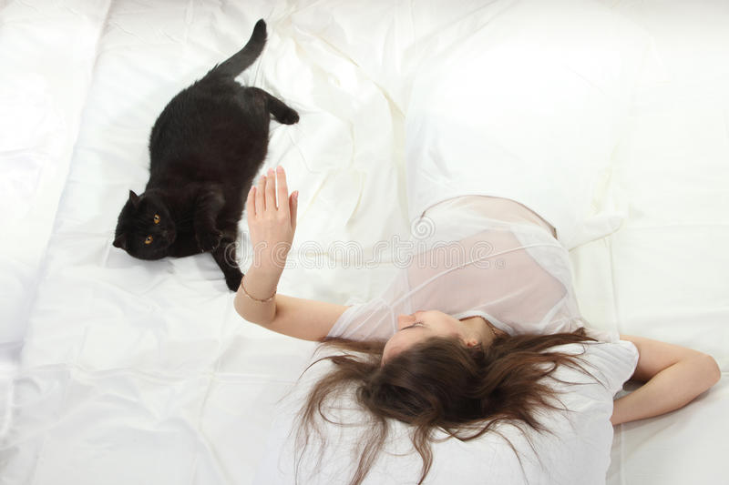 Download Woman play with a cat stock image. Image of european - 17257463