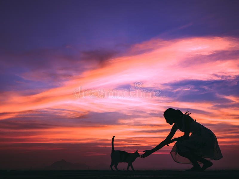 Woman playing with cat. Silhouette of girl plays with her cat on the roof royalty free stock photography