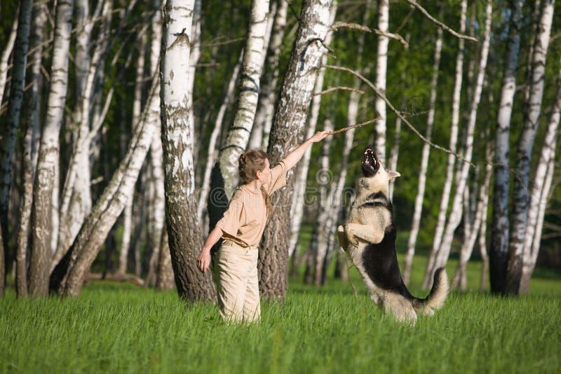 Woman playing dog stock photos