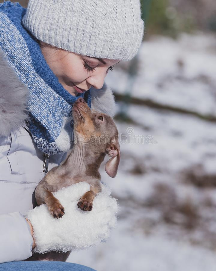 Woman playing with dog during winter stock photos