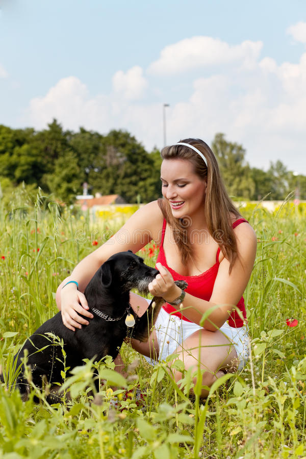 Woman playing with her dog in a meadow stock photos