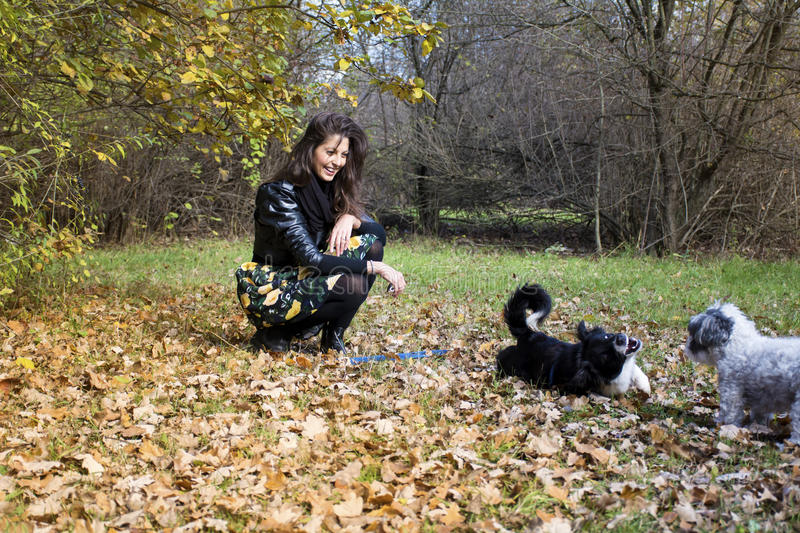 Woman playing with her dogs in an autumn park. Brunette woman with her two dogs in the autumn park stock photo