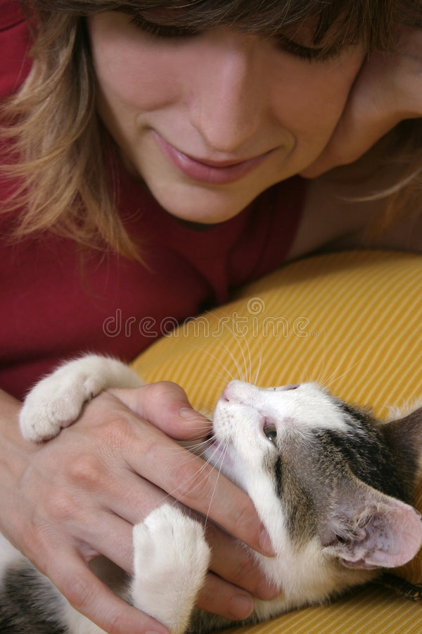 Woman playing with kitten stock images