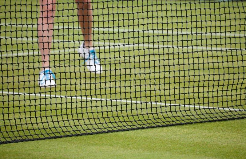 Download Woman Playing Tennis Royalty Free Stock Photo - Image: 23504635