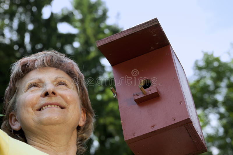 Woman pleased with birdhouses royalty free stock images