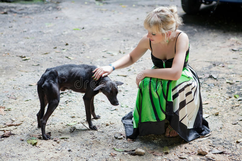 Woman with a poor stray dog. Woman giving comfort to a poor homeless dog royalty free stock image