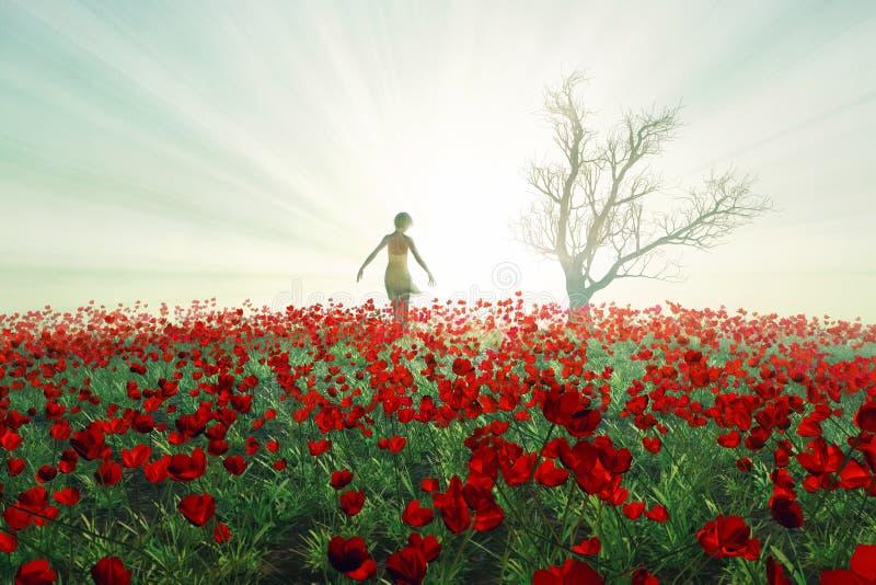 Download Woman on the poppy field stock illustration. Illustration of poppy - 23539975