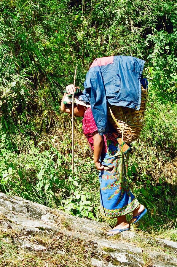 Woman Porter, Nepal royalty free stock image