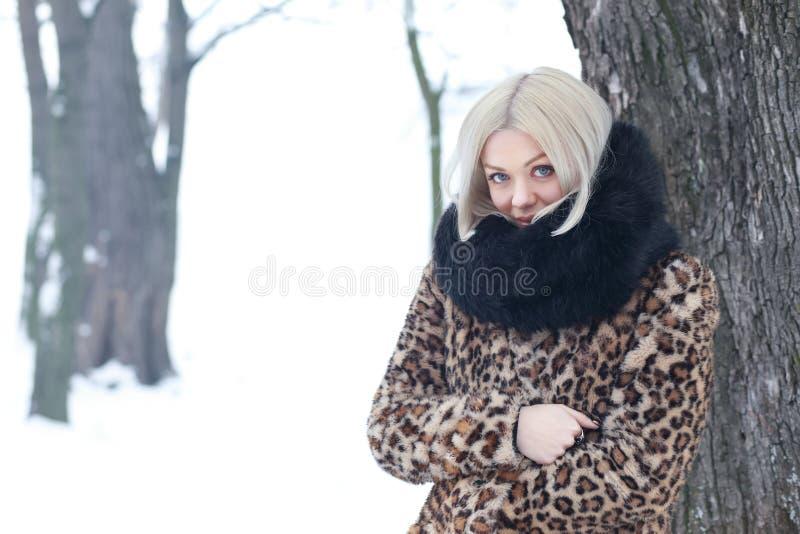 Woman portrait in winter. Young blond woman portrait in winter park weared in furry coat stock photos