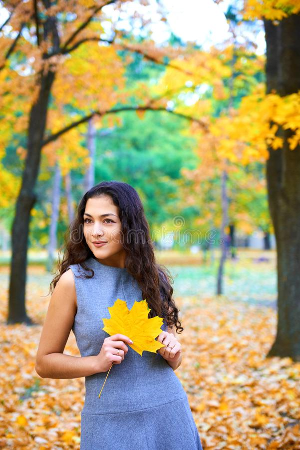 Woman posing with autumn leaves in city park, outdoor portrait royalty free stock photography