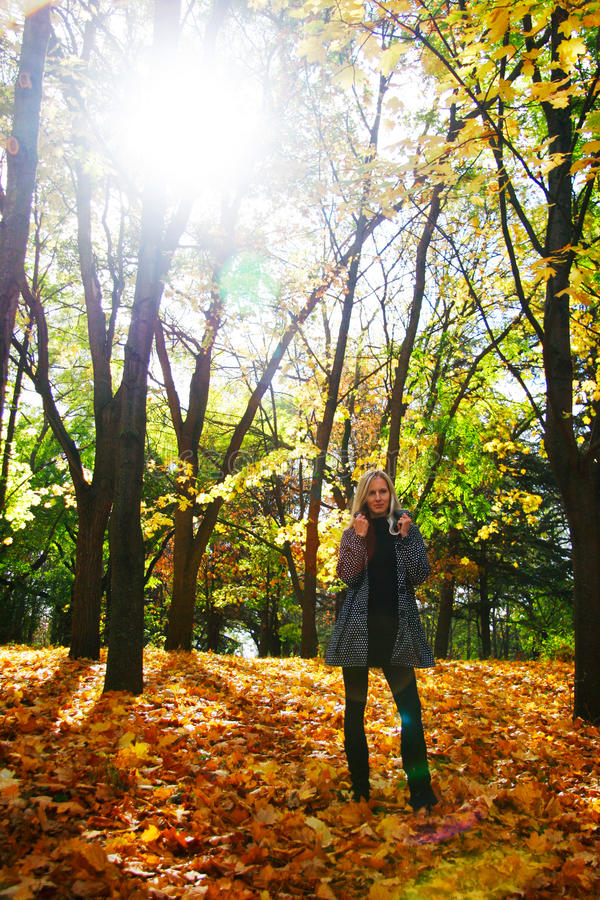 Woman posing in autumn park stock images