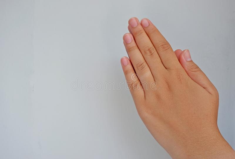 Woman praying hands/hand shake    on grey background. Side view close up details. stock photo
