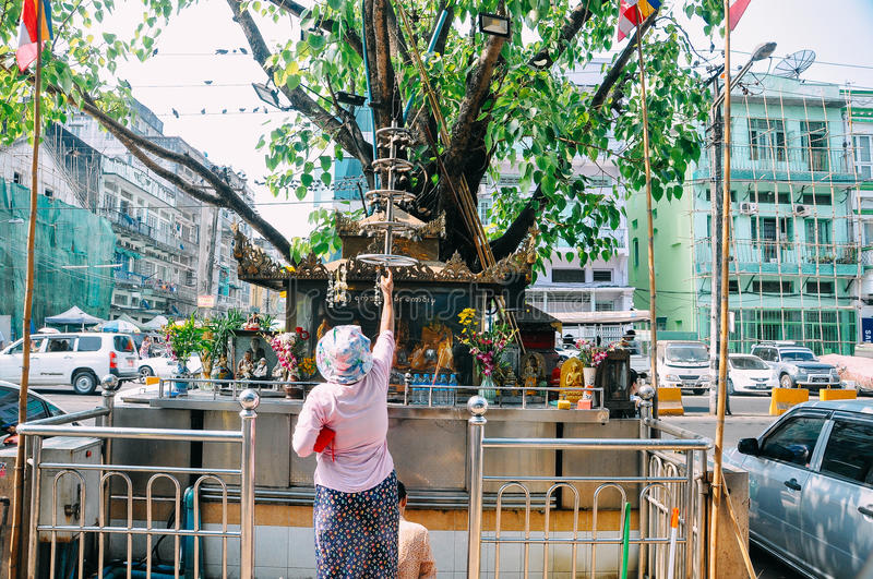 A woman prays at a street temple in Yangon. royalty free stock image
