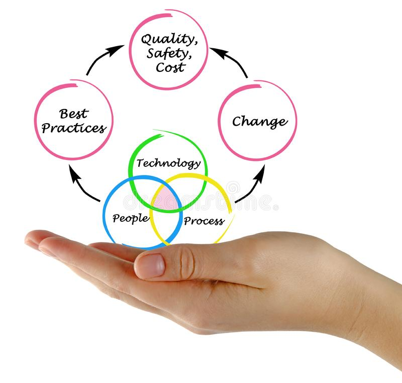 Management diagram. Woman presenting contributions technology and processes to quality stock image