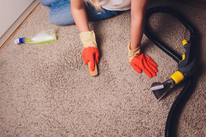 Woman in protective glove cleaning carpet with brush. royalty free stock photo