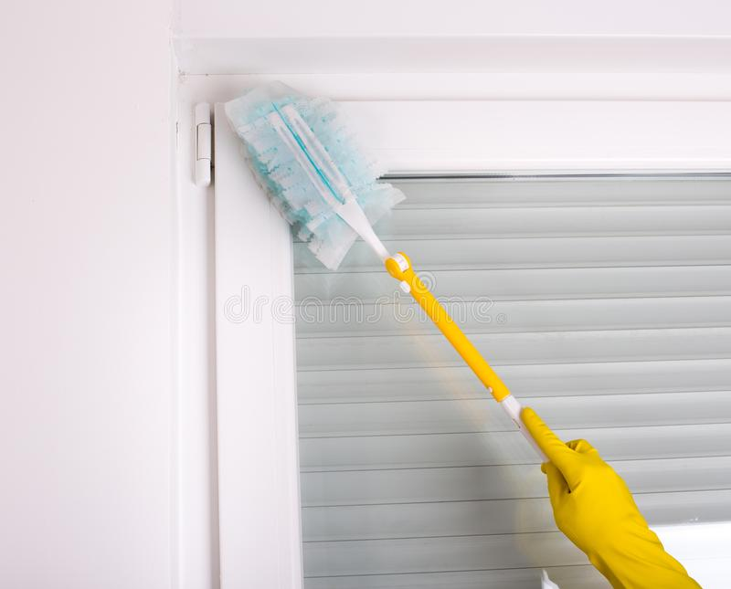 Woman dusting home. Woman with protective gloves dusting corners and walls in room royalty free stock photo