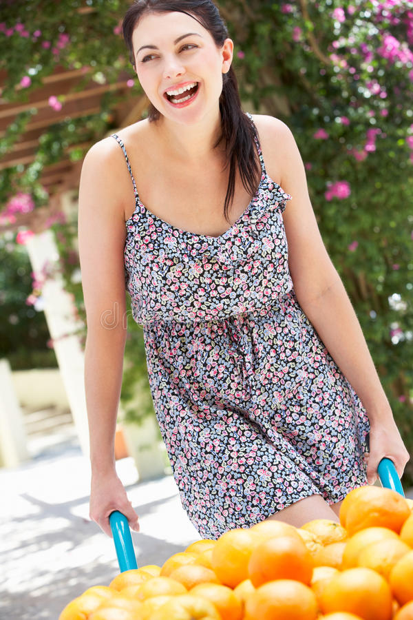 Download Woman Pushing Wheelbarrow Filled With Oranges Stock Image - Image: 27272907