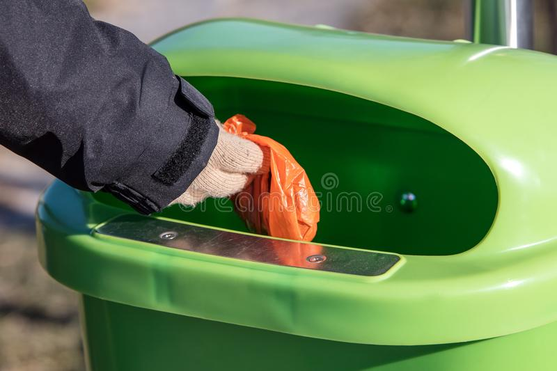 Woman putting a excrement bag from a dog into a waste bin contai. Nter, defecation of dog dirt royalty free stock image