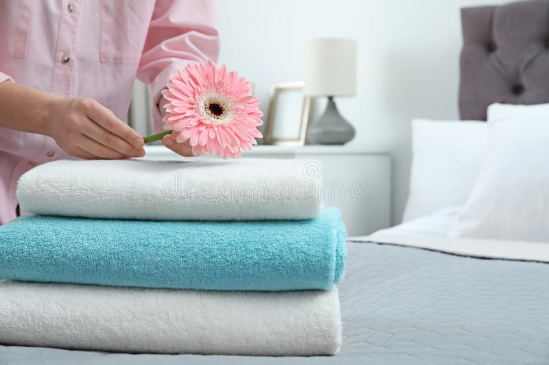 Woman putting flower on stack of clean towels in bedroom. Space for text royalty free stock image