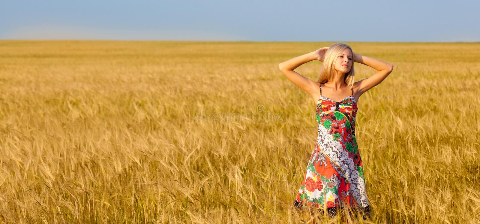 Woman with raised up hands on wheat field royalty free stock image