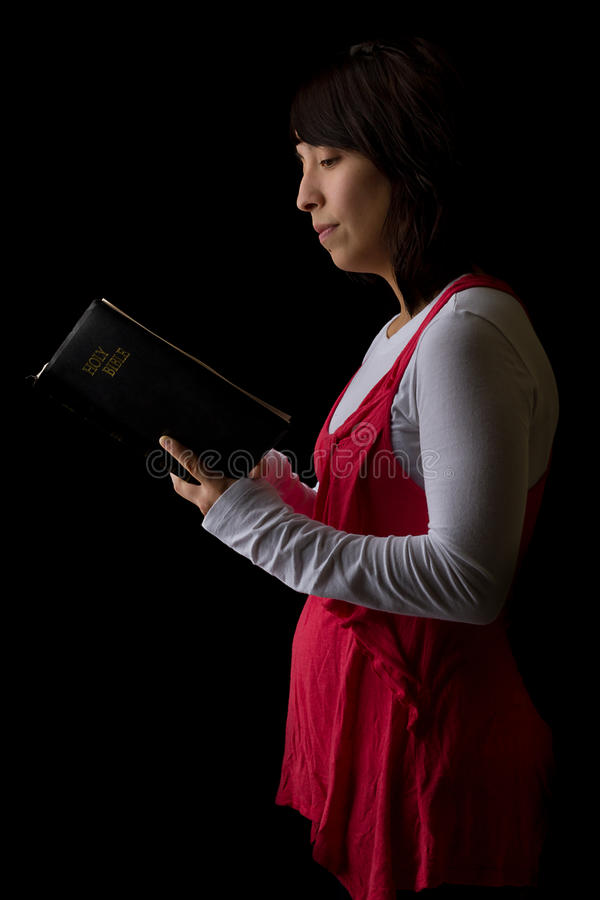 Download Woman Reading the Bible stock photo. Image of background - 22232600