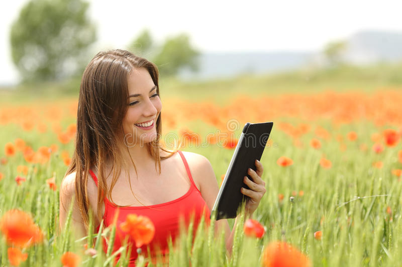 Woman reading ebook in a red field. Woman reading an ebook or tablet in the middle of a field with red poppy flowers in summer royalty free stock photography