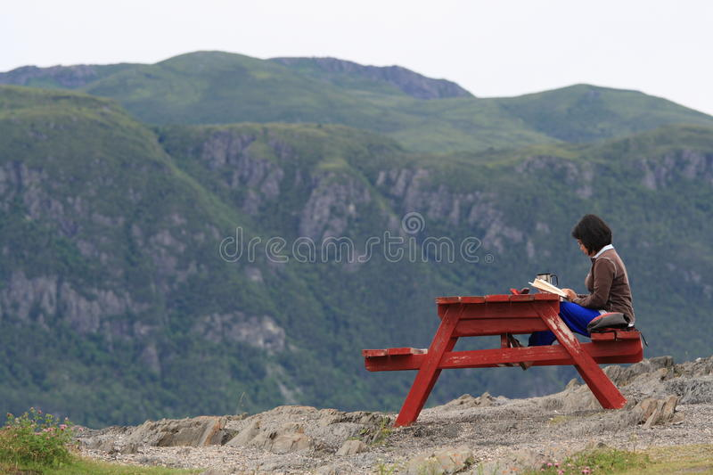 Woman Reading with the Landscape royalty free stock image