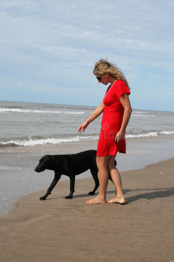 Download Woman in red and black dog stock image. Image of beautiful - 11708179