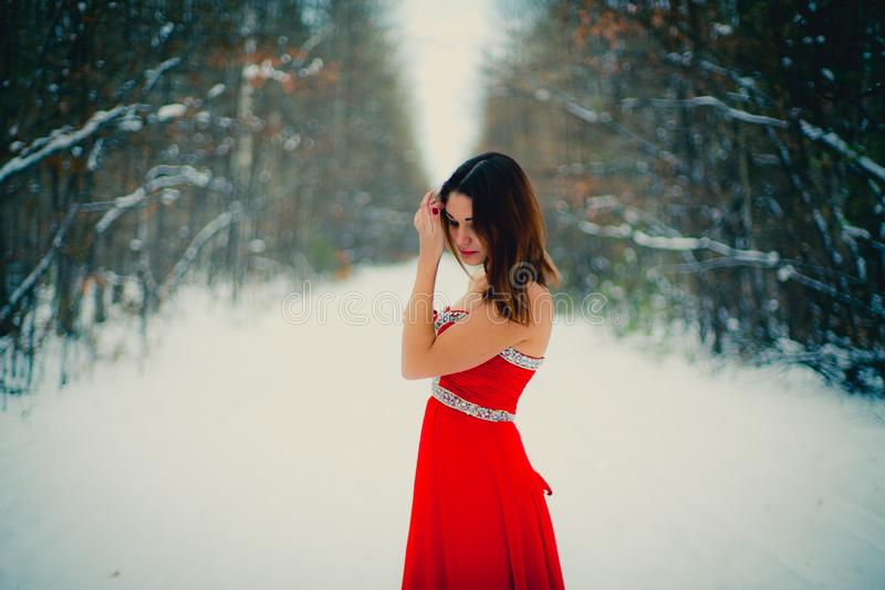 Woman in red dress. Siberia, winter in forest, very cold royalty free stock photos