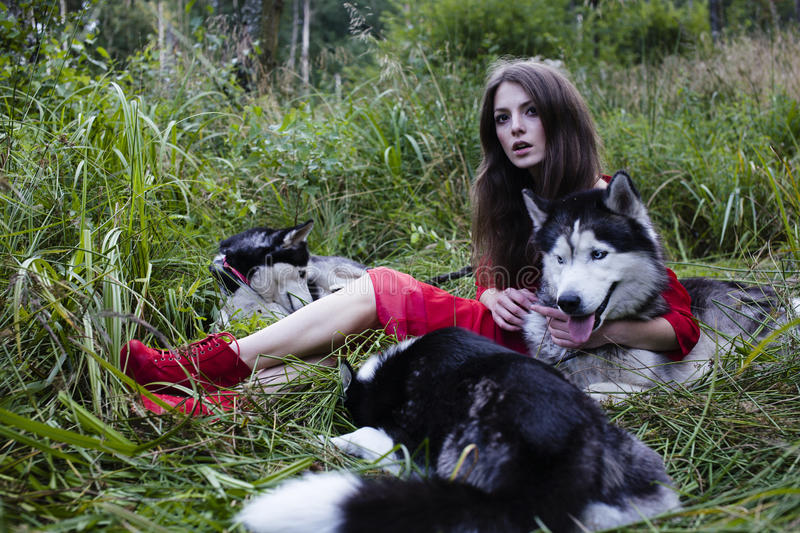 Woman in red dress with tree wolfs in forest stock images