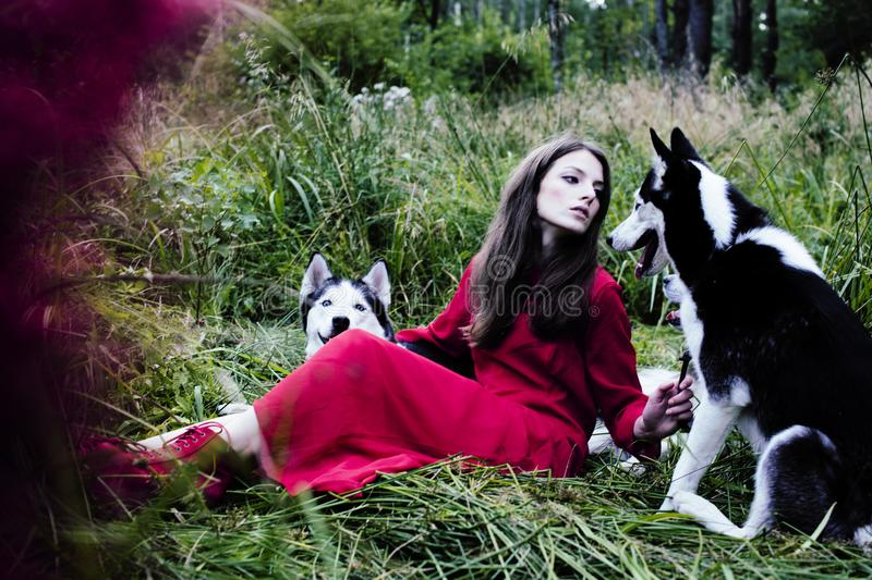 Woman in red dress with tree wolfs, forest, husky dogs mystery p. Mysterious woman in red dress with tree wolfs, forest, husky dogs mystery portrait stock image