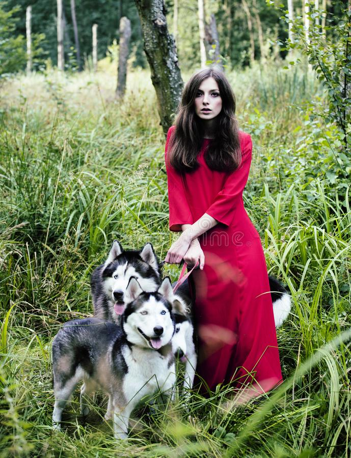 Woman in red dress with tree wolfs, forest tail. Woman in red dress with tree wolfs, forest, husky dogs royalty free stock photos