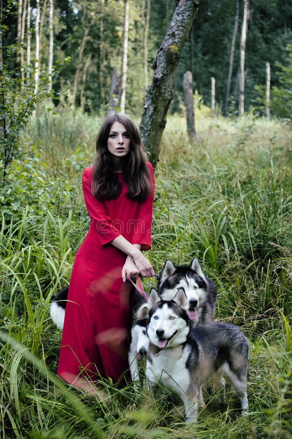 Woman in red dress with tree wolfs, forest tail. Woman in red dress with tree wolfs, forest, husky dogs stock photos