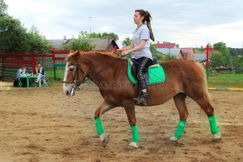 Woman on the red horse warming up before competition. royalty free stock image
