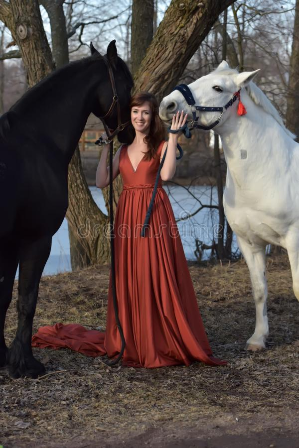 Woman in a red long dress with two horses stock photos