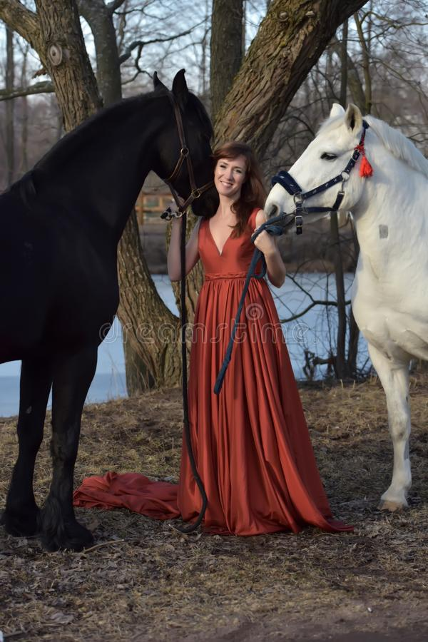Woman in a red long dress with two horses stock images