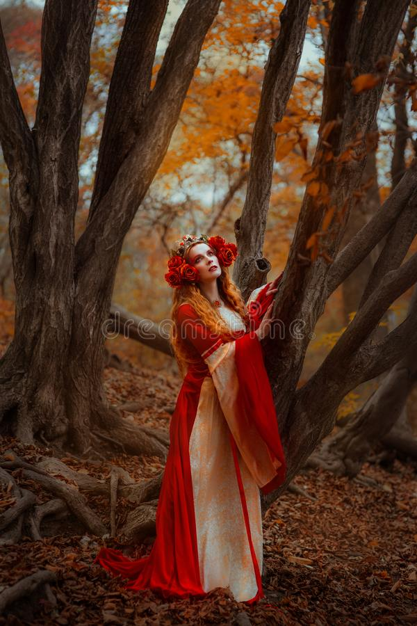 Woman in red medieval dress stock photo