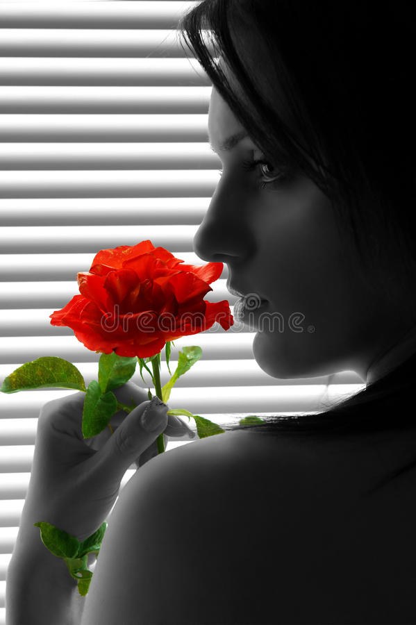 Download Woman with red rose stock image. Image of shadow, make - 27197623