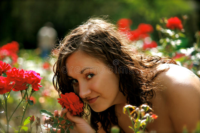 Download A Woman In The Red Rose Garden Stock Photo - Image: 10716868