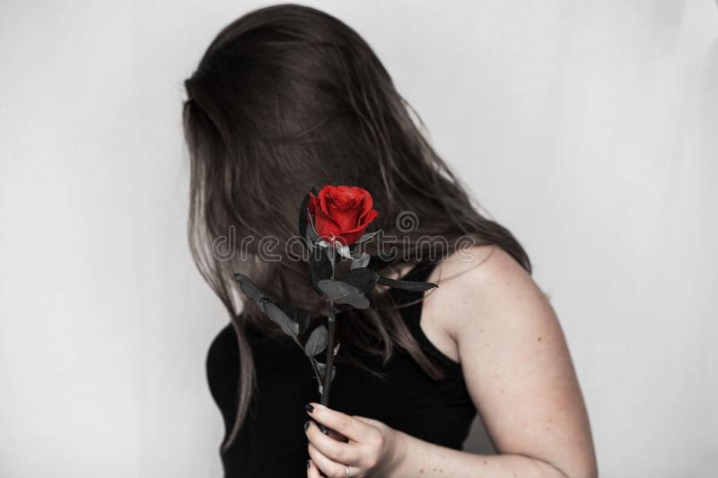 Woman with a red rose in her hand close-up, romantic valentines concept royalty free stock photography