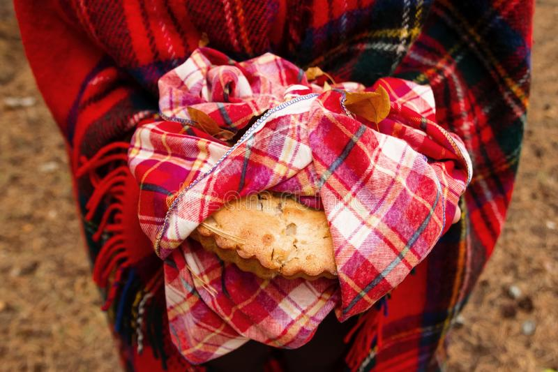 Woman in red Scottish plaid is holding apple pie on red checkered towel . royalty free stock image