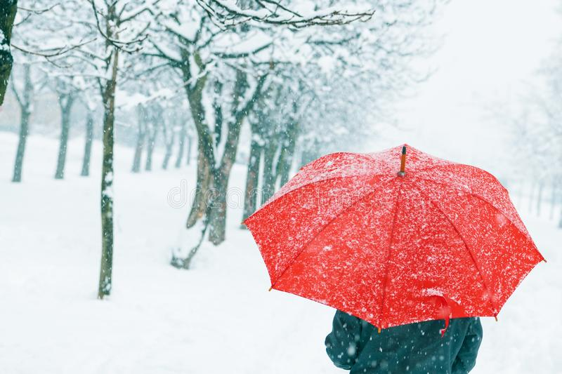 Woman with red umbrella in snow. Enjoying the first snowfall of the winter season stock images