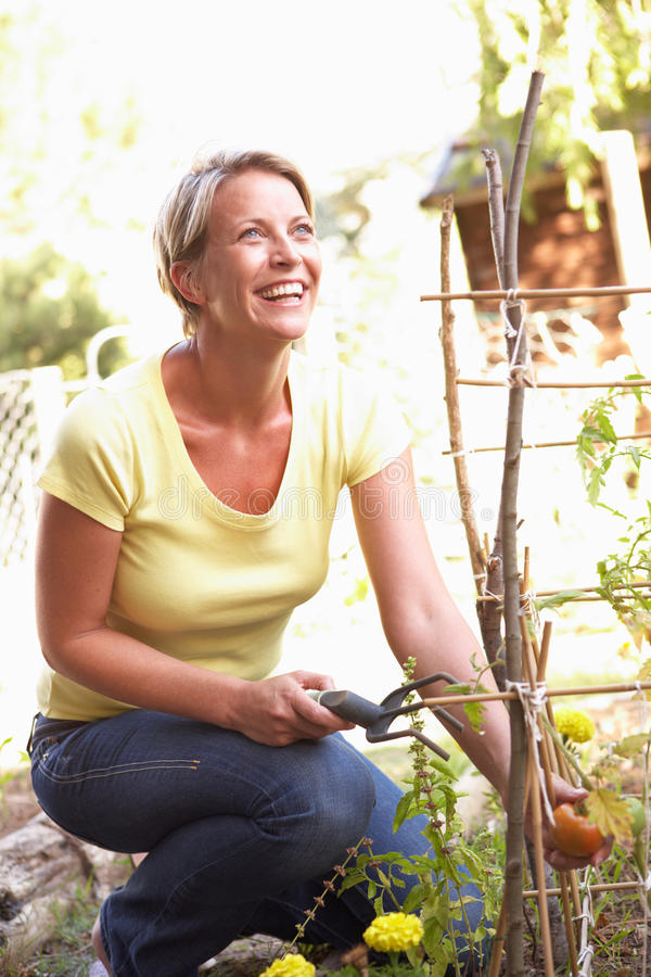 Woman Relaxing In Garden looking up royalty free stock image
