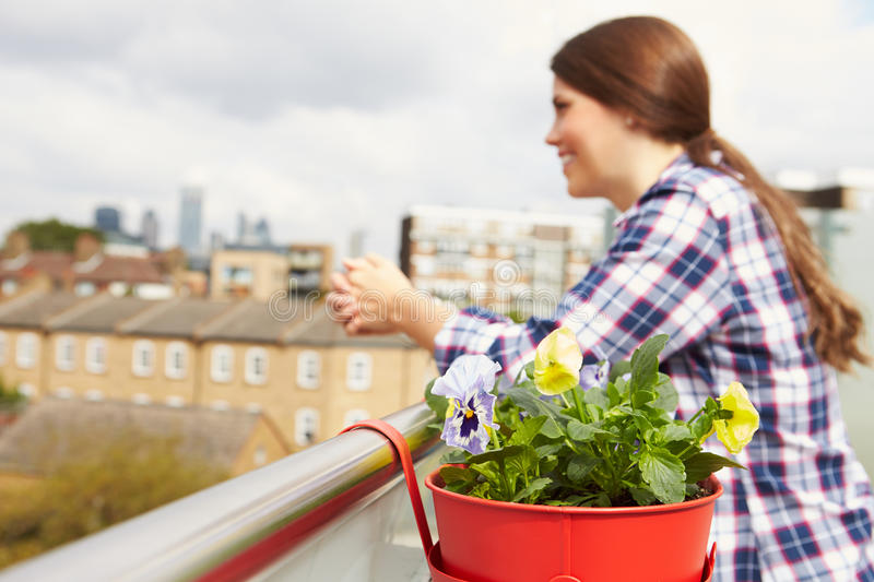 Woman Relaxing Outdoors On Rooftop Garden stock image