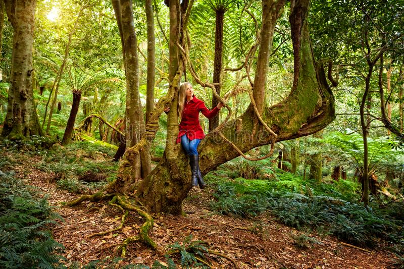 Woman relaxing in a tree among nature`s rainforest garden stock photo